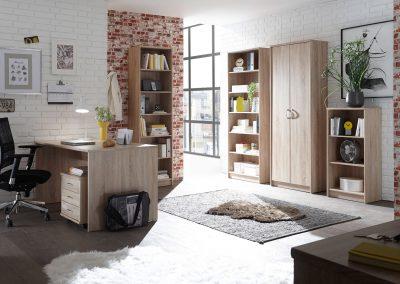 BEGA-Consult – Optimus Büro Sonoma